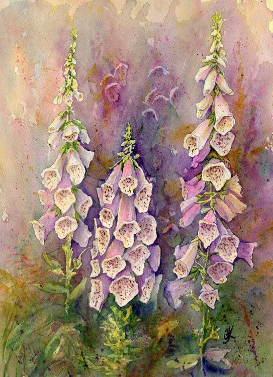 Woodland Foxgloves - Image 0