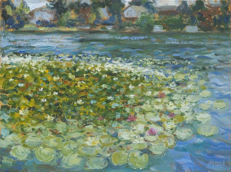 Blue Lake Park/Water Lilies - Image 0