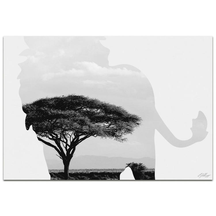 Lion Savanna | Contemporary Metal Animal Silhouette Art - Image 0