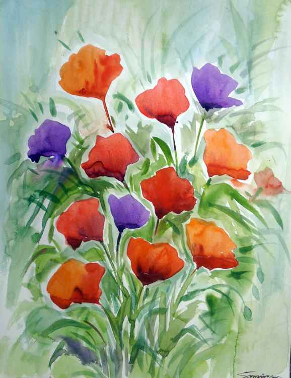Beauty of Poppies Flowers V - Watercolor Painting -