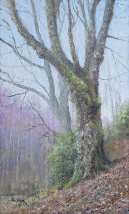 tree study - Image 0