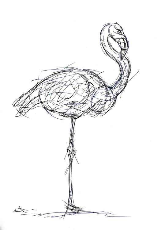 Esquisse - Flamingo -