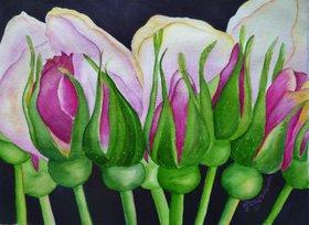 Rosebuds by Subodh  Maheshwari