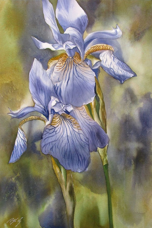 Irises in blue - Image 0