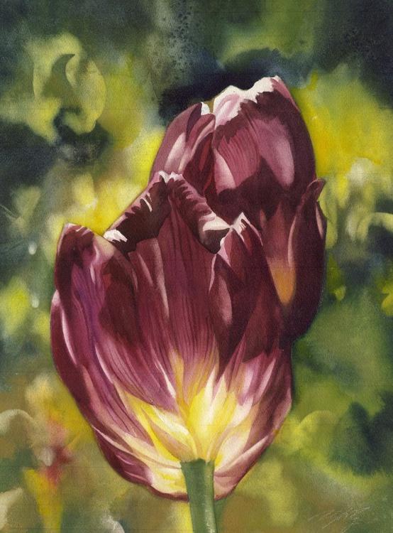 Crimson in spring - Image 0
