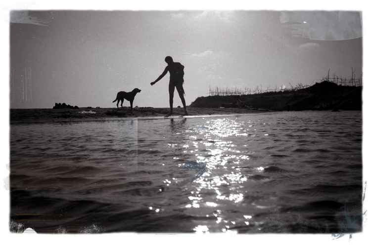 Man and dog silhouette