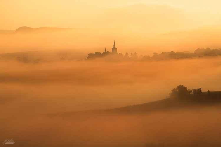 Velvet morning -