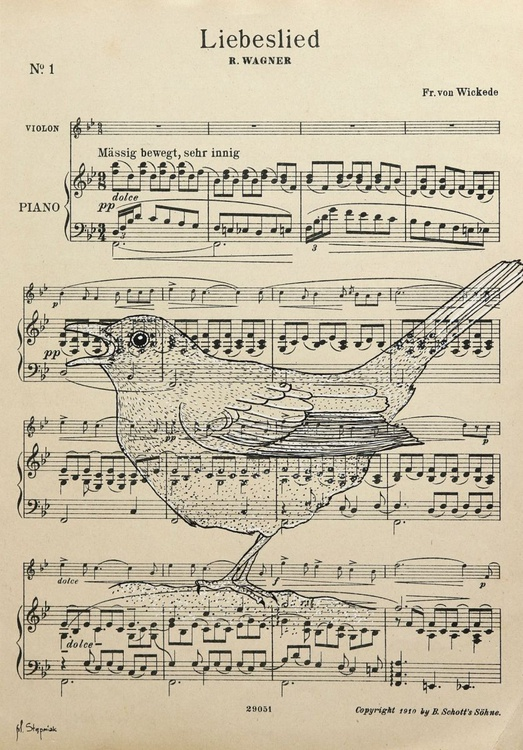 The Common Blackbird - Liebeslied (Lovesong) - Richard Wagner - Image 0