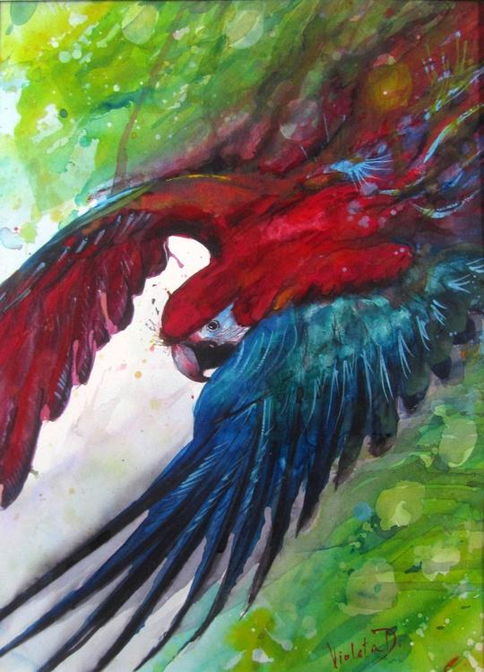 Scarlet Macaw Energetic Flight - Image 0