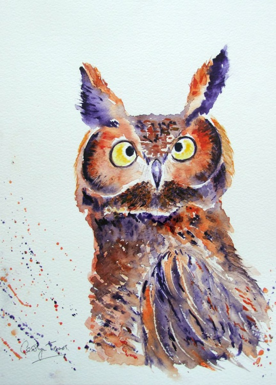 Are you hooting at me?! (REDUCED) - Image 0