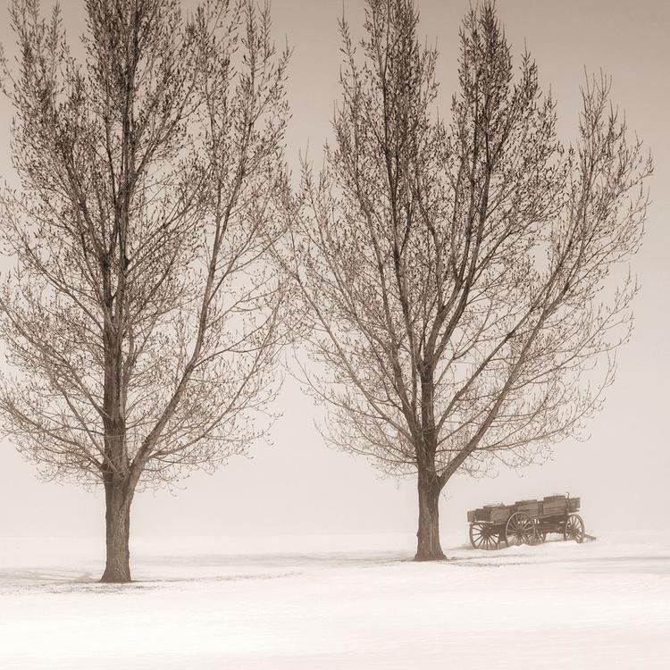 Dos árboles y un Vagón - Image 0