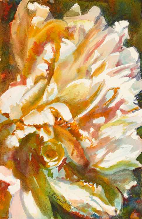 Abstract Peony -