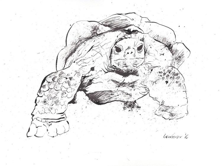 My Grumpy Tortoise - Image 0