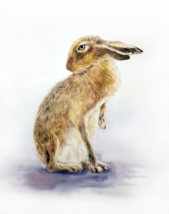 Brown Bunny - Image 0