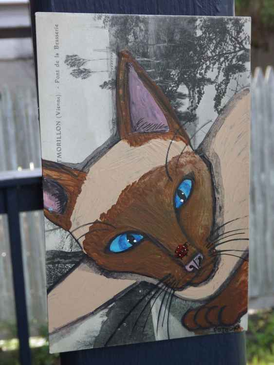 Siamese Cat and Ladybug- Cats of May Series -