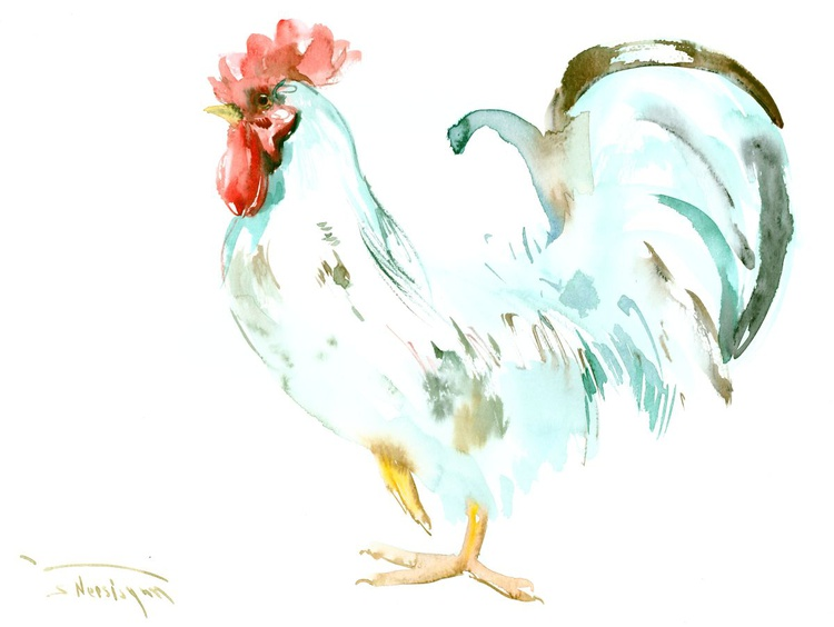 White Rooster - Image 0