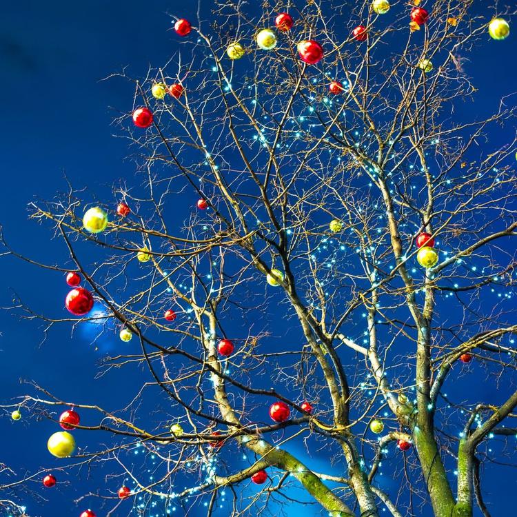 Holiday tree. - Image 0
