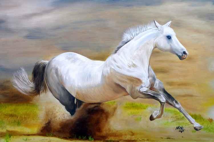 Wild Horse -