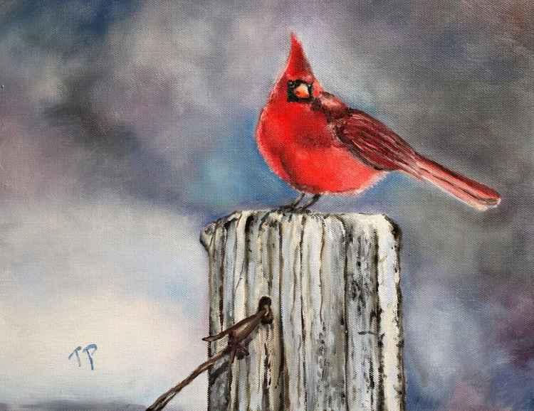"""Fencepost Cardinal"" -"