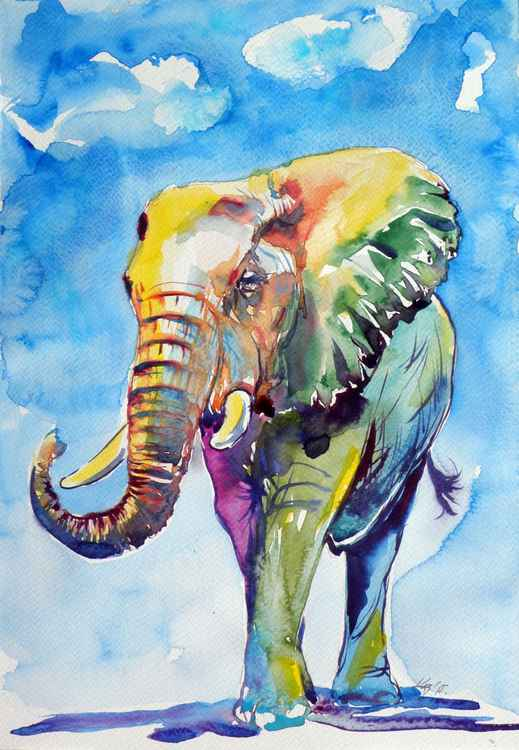 Colorful elephant VI. -