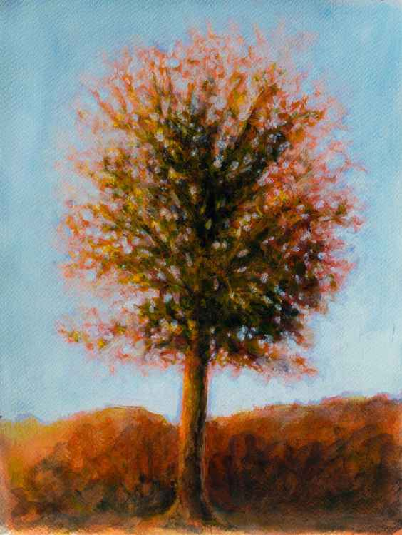 Autumn colors - acrylic on paper 27X35cm - small size -