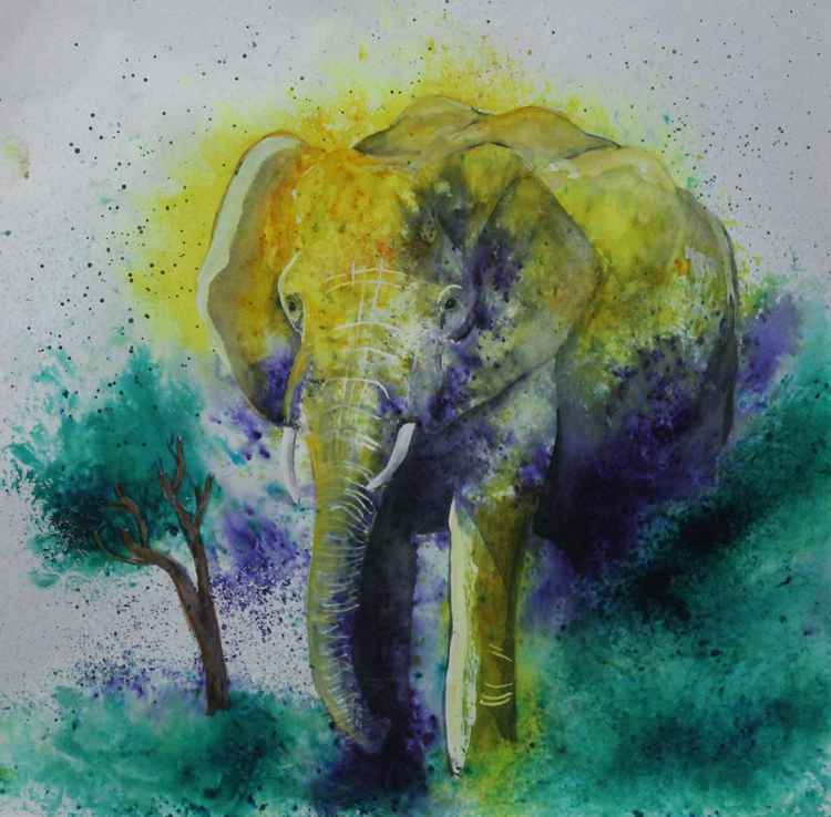 Elephant! -
