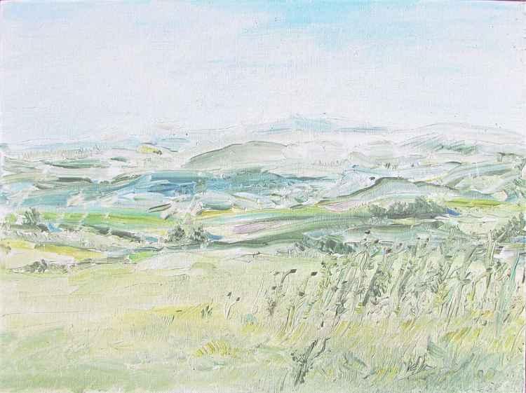 Dartmoor View nr Okehampton -