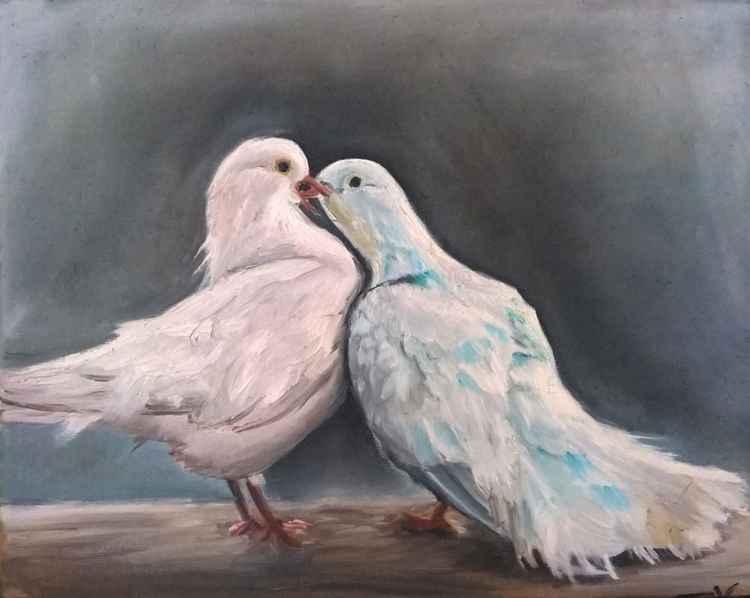 doves -
