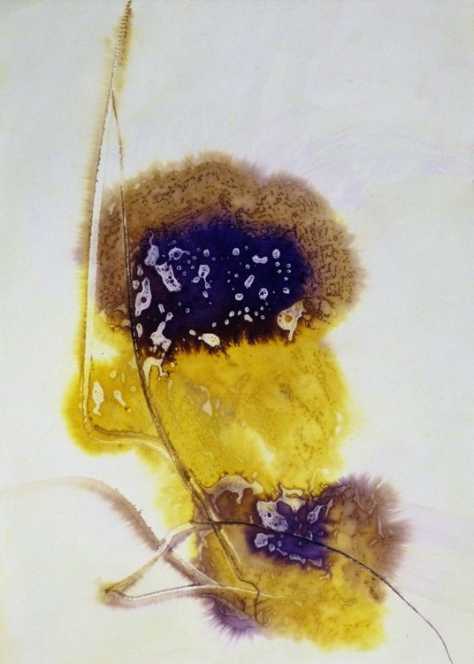 Yellow and violet flower, Ink on Paper, 29x41 cm - Image 0