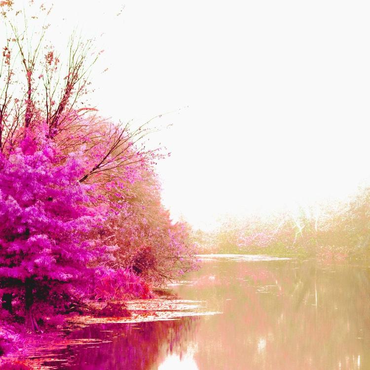 I dream in Color - Image 0