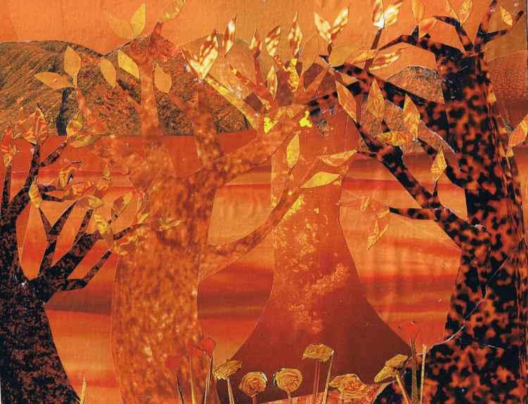 Orange Trees  -