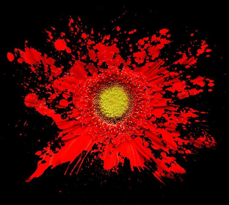 Red Splash - Image 0
