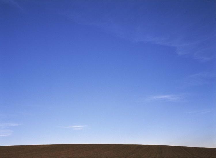 Field #12 - Image 0