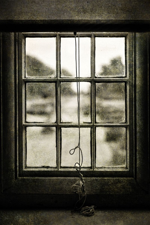 Looking Glass - Image 0