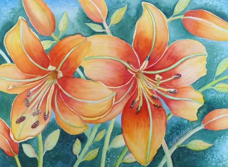 Orange Lily -