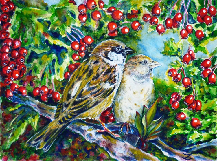 Sparrows on the Hawthorn - Image 0