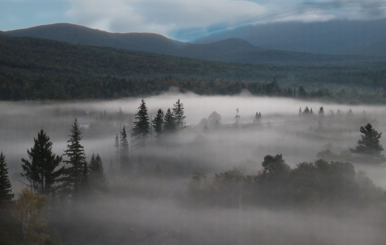 Morning Fog 1 - Image 0