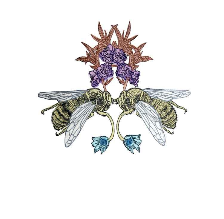 Love Bees -