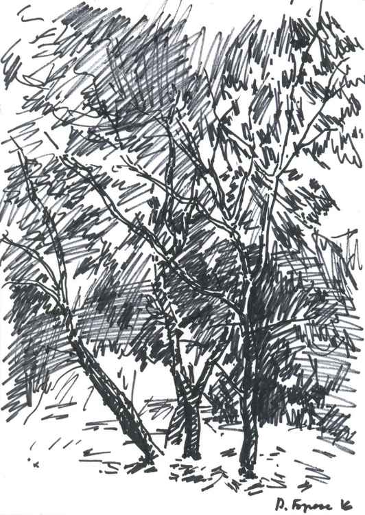 Trees (sketch) -