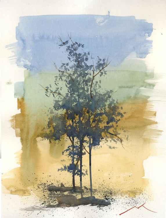 Tree O