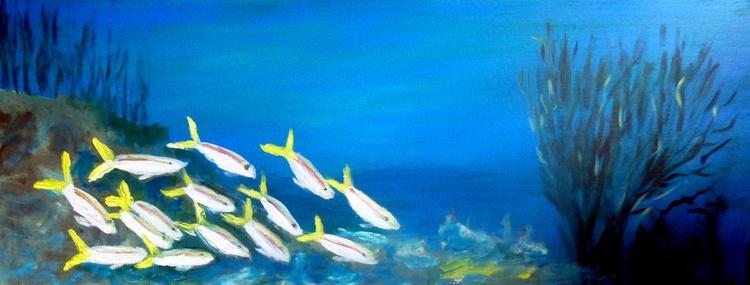 The aquarium - Image 0