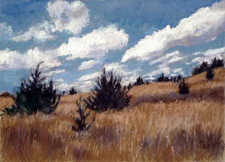 The Prairie in Early Spring -
