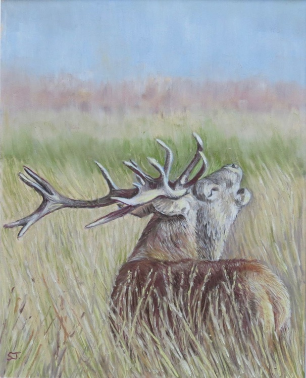 Rutting Stag - Image 0