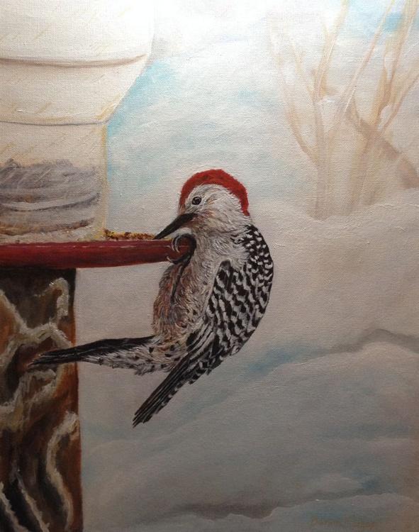 Red-Bellied Woodpecker - Image 0