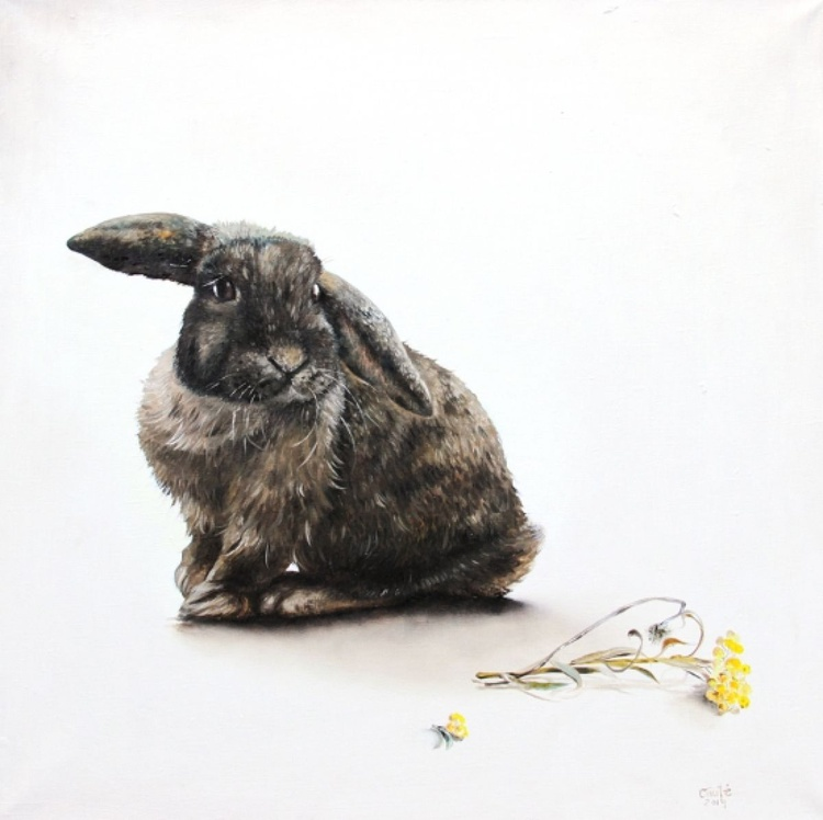 Rabbit With Immortelle - Image 0