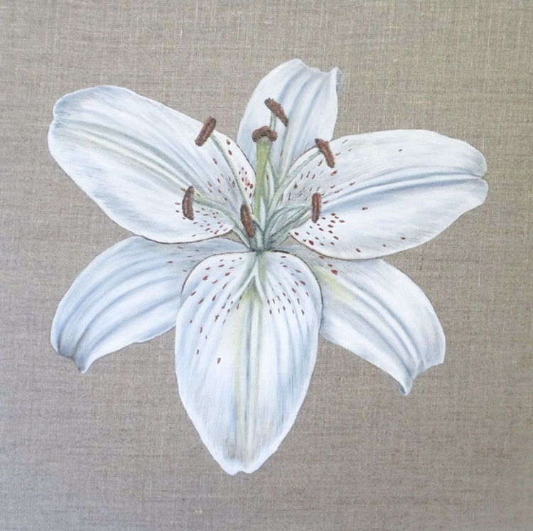 White Lily 2 - Image 0