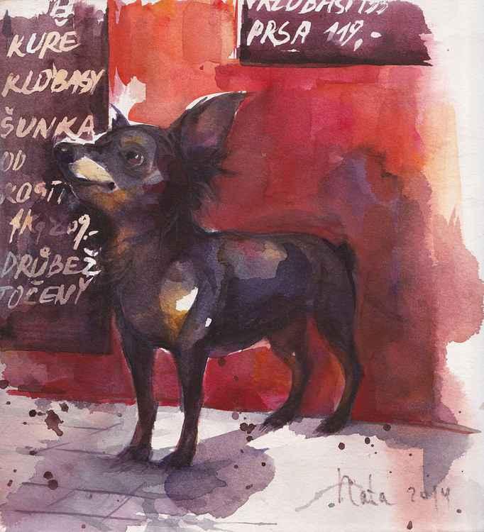Сhihuahua ( Series butcher's shop) -