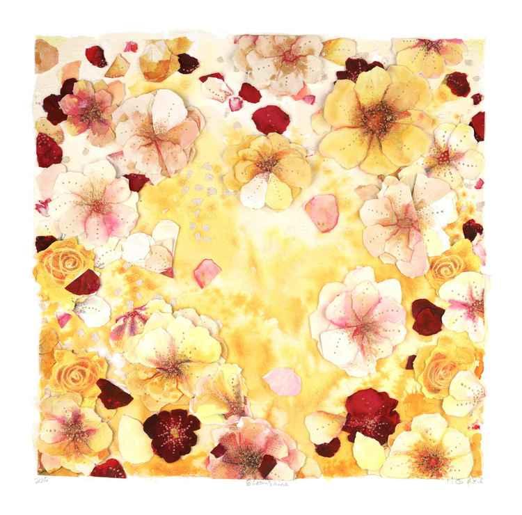 'Bloomshine' -