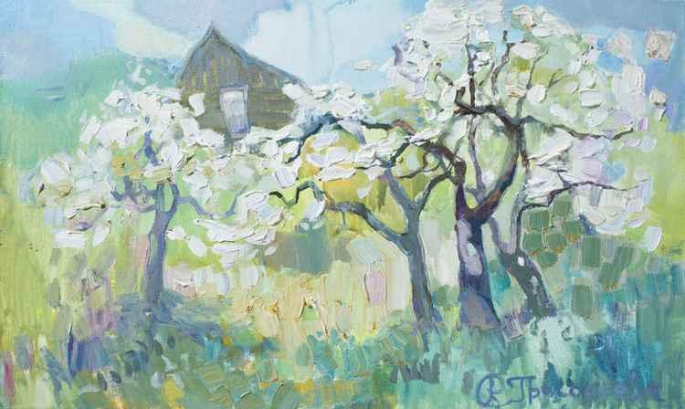 Cherry Garden -