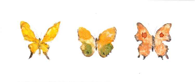 Three Butterflies 219YG1 -